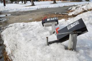 Mailbox Damage Policy